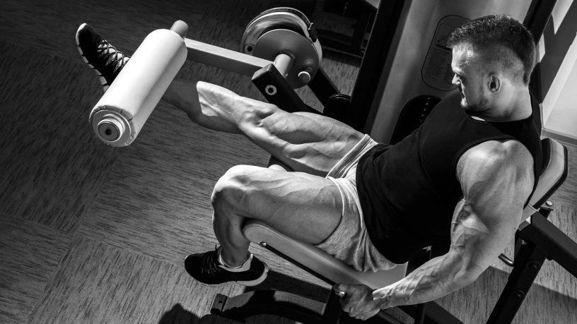 Rutina por grupos musculares