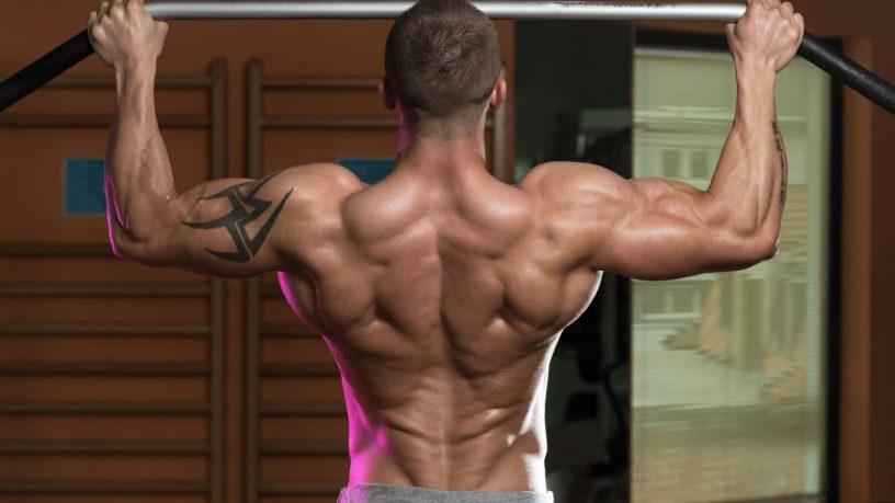 Tabla ejercicios de espalda
