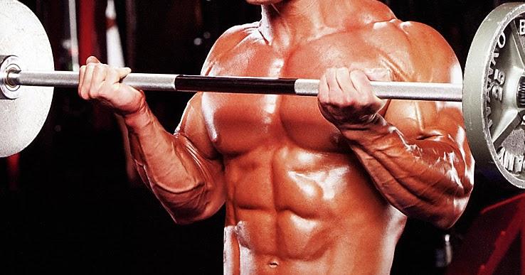curl barra biceps