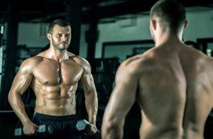 distribución muscular