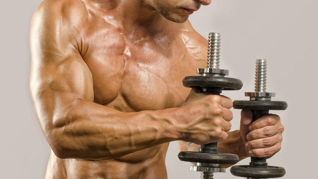 tipos de rutinas de pesas