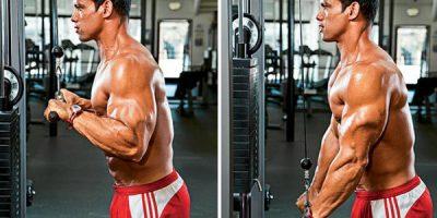 triceps polea