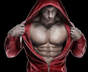 fuerza y el crecimiento muscular
